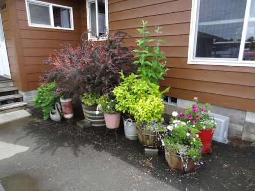 and more patio planters