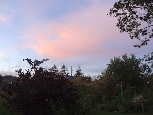 pink sky to the east