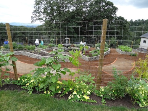 looking down on the veg terrace carved out of the sloping lawn