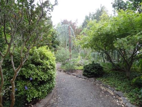 wandering around the house gardens again