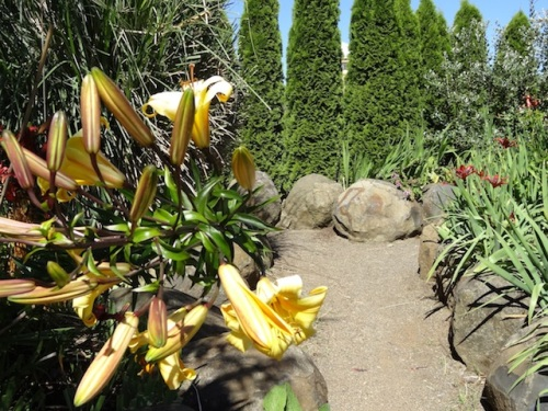 back toward the sunny garden
