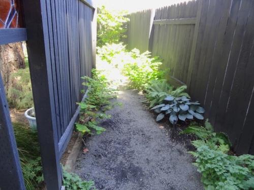 hosta path