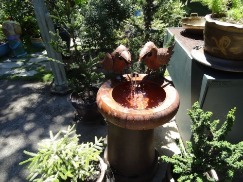 I saw this crow fountain at 7 Dees Seaside last year...It makes a clacking noise.