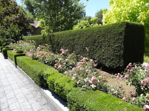 formal gardens around the house