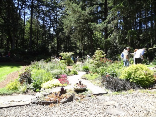 The garden bed extends toward the woods.