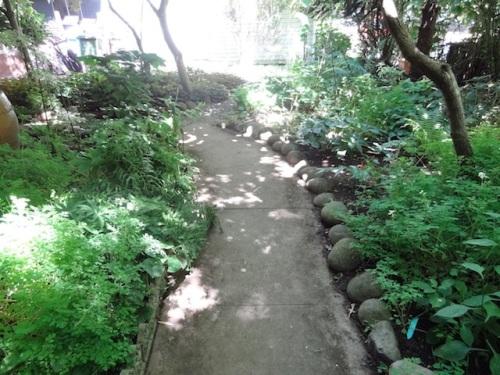 entering the front garden