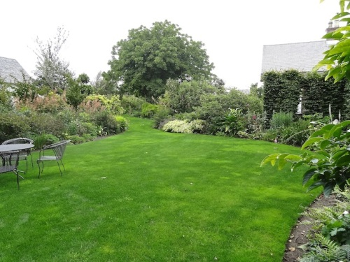 the vast, plush lawn