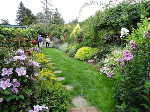 Jo's vibrant back garden.