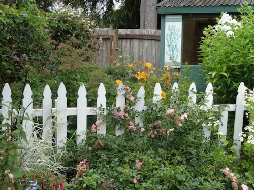 a picket fence next to the old garage separating two garden areas
