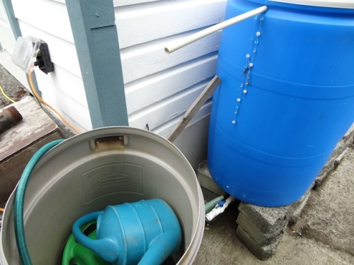 A barrel for water dipping