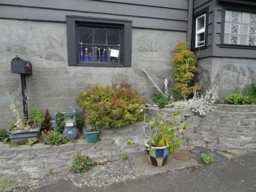 same house, alleyside container garden