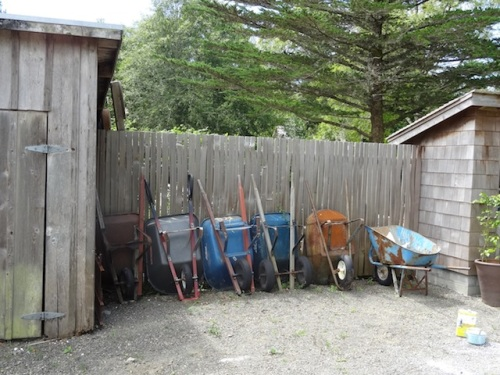 Enough wheelbarrows for the gardener and his helpers, Melissa and David and sometimes Todd, to move mulch together.