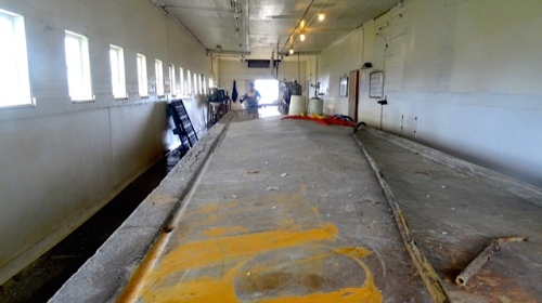 oyster processing room (Allan's photo)