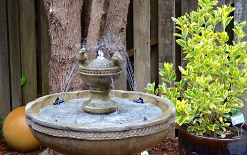 inside the front gate, a hummingbird fountain