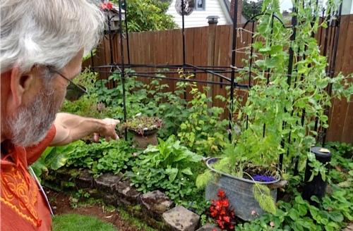 garden innovator Frank (Allan's photo)