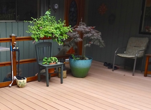the back deck again