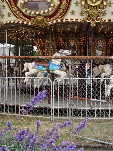 carousel (Allan's photo)