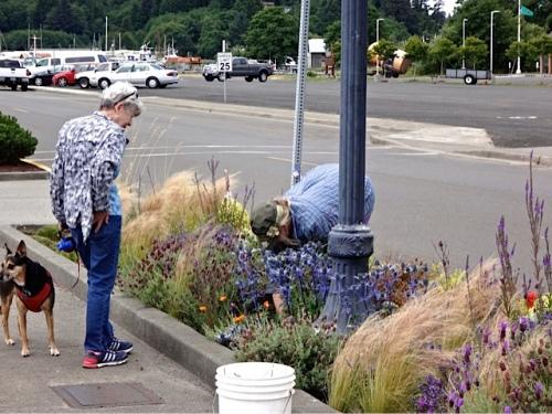 weeding along Howerton Ave