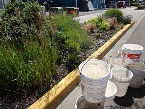 water buckets (Allan's photo)