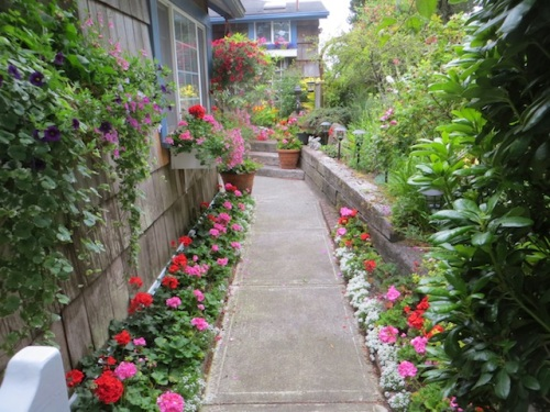 Jo's entry garden