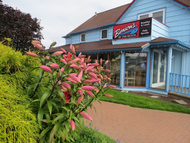 When open, these lilies colour coordinate with the Benson's sign.