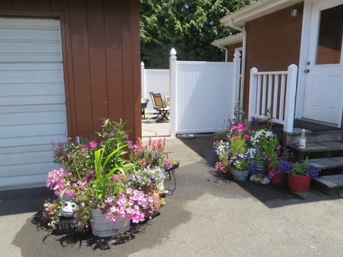back yard containers