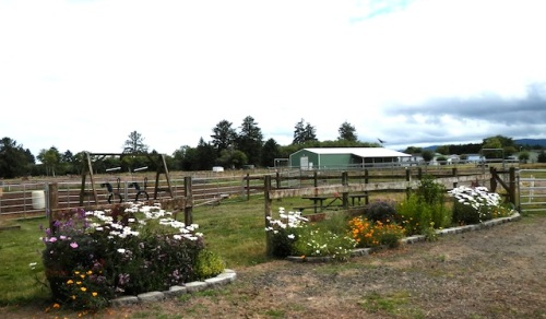 Red Barn garden
