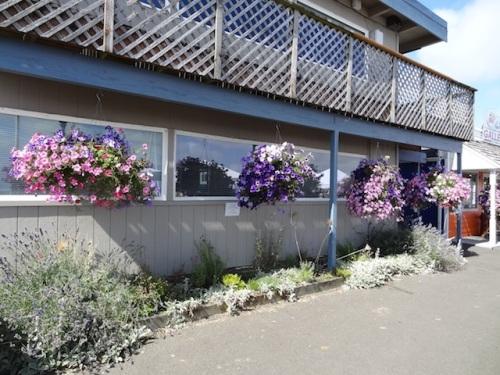 Port Office Garden