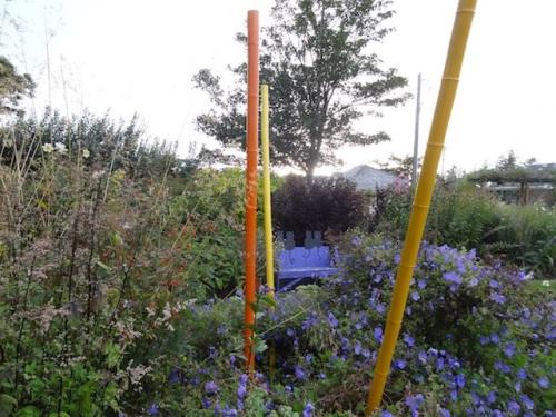 last week's bamboo poles