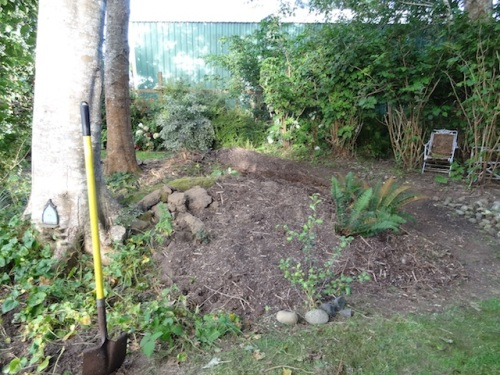 mulched with ten or more wheelbarrows of soil