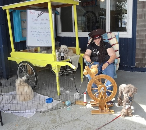 spinning at Purly Shell Fiber Arts (with dogs and an angora rabbit)