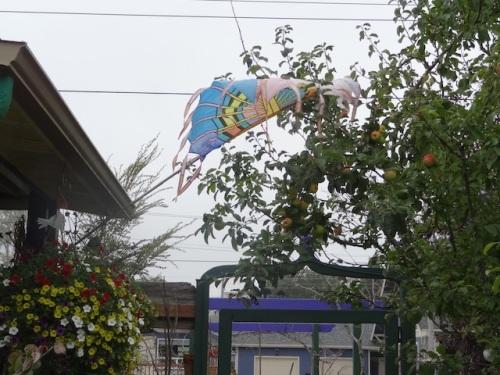 so unpleasantly windy!