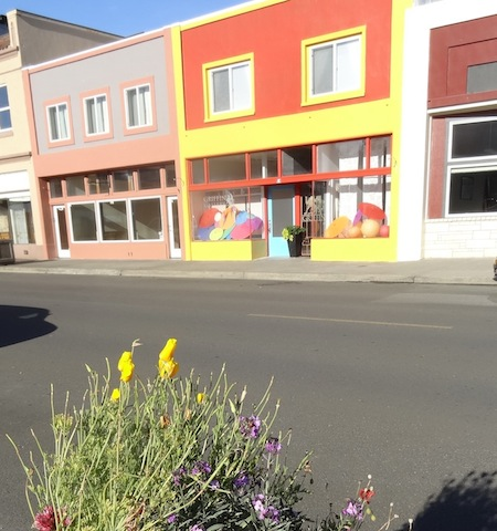 Volunteer California poppy matches a new paint job.