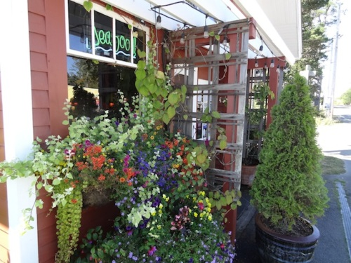 the entry, with windowboxes by Nancy Aust of the Basket Case Greenhouse