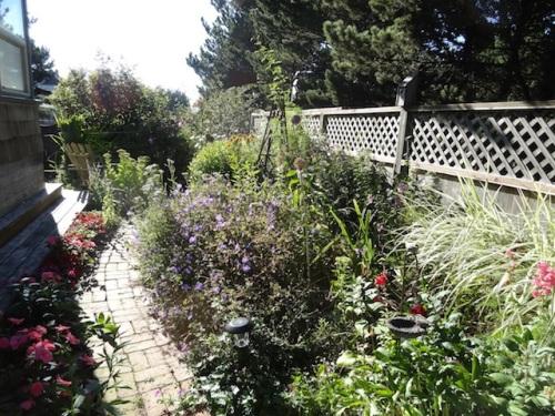 northwest garden bed at Jo's