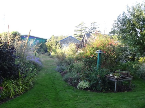 late summer evening garden