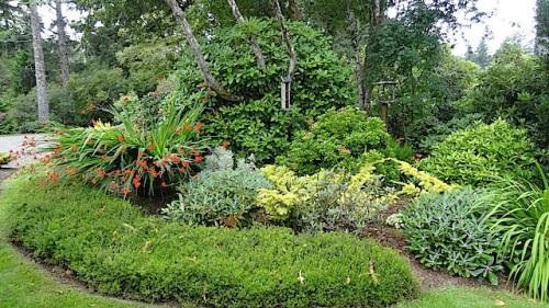 the upper driveway garden again
