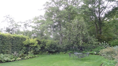 the dreamy north lawn. The plan is to remove a couple of the old trees. I look forward to the before and after on that.
