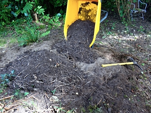 good debris soil (Allan's photo)