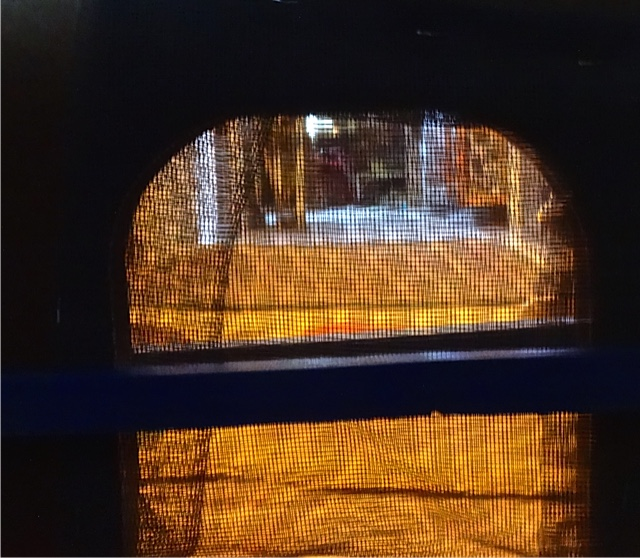 Scooter's eye view tonight of the cat tunnel covered with screen.