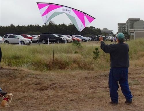 kite flyers everywhere (Allan's photo)