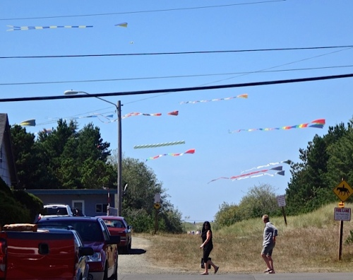lots of big kites visible from town (Allan's photo)