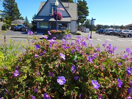 Allan's photo, southernmost planters