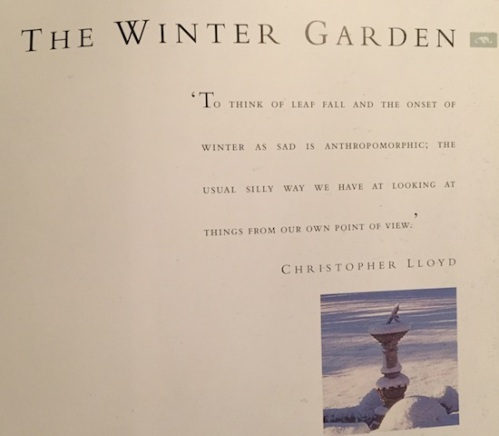 Three months recovery from a knee replacement could make me miss my winter garden this year. I love winter gardening.