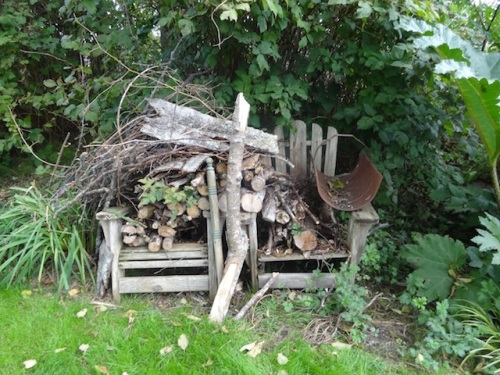 We have this much small storm fallen firewood left, and some long branches.