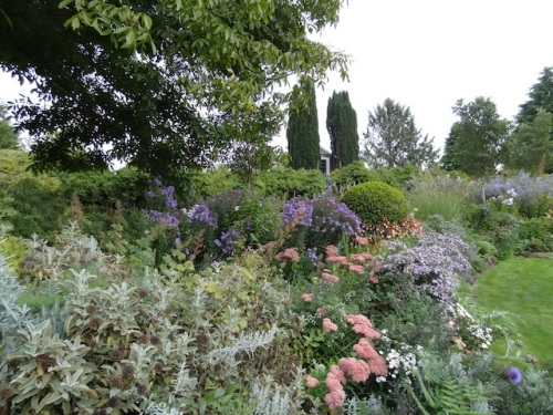 the front border