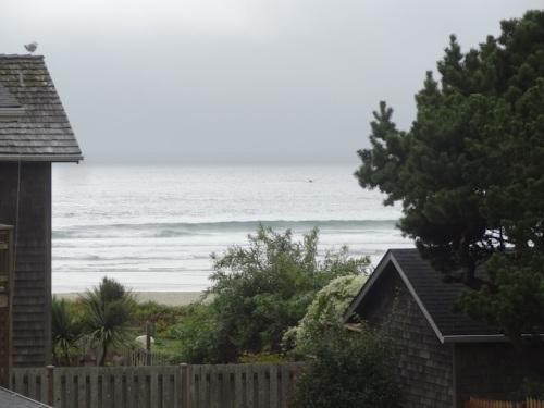 my telephoto sees beachfront gardens