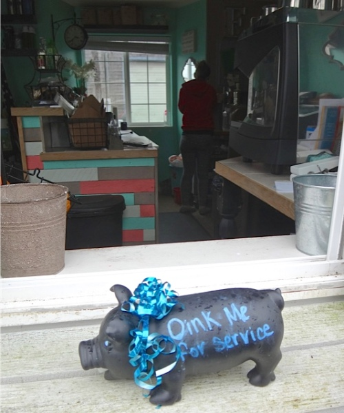 Roots' owner has a pet pig (Prince Piggy)