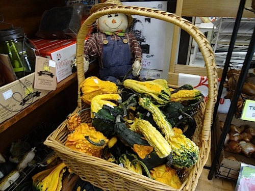 and gourds