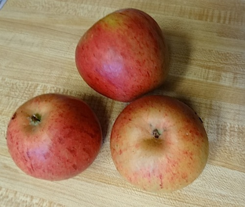 and some Cox's Orange Pippin apples